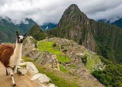 El Tribunal Constitucional de Perú ordena la liberación del expresidente Ollanta Humala y Nadine Heredia