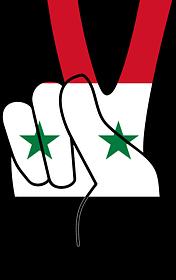 Siria: ejército y policía celebran tras recuperar Damasco