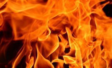 Por qué los incendios de Grecia que dejaron al menos 74 fallecidos son tan mortíferos