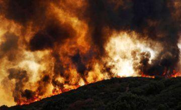 Gobernador de California pide ayuda federal contra incendios