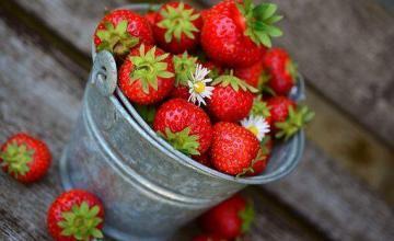 El sabotaje a las fresas con agujas de coser dentro se extiende a otras frutas en Australia
