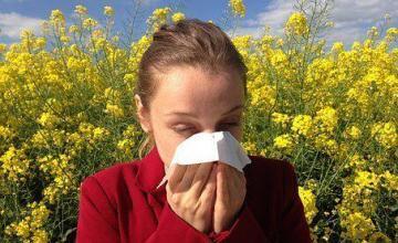Buscan en Chile curar la alergia ambiental, que ataca al 20 % de la población mundial