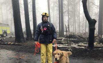 Contienen catastrófico incendio en norte de California