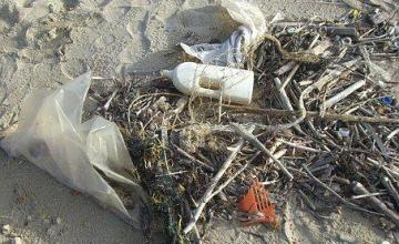 El foro Asia Oriental acuerda un control efectivo de los desechos plásticos