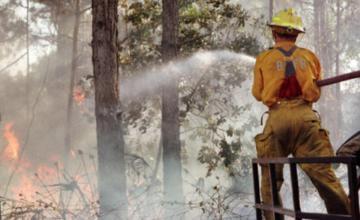 Incendio en Everglades de Florida devora unos ocho kilómetros cuadrados