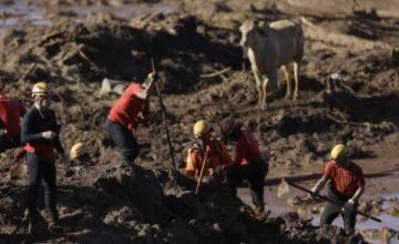 Cinco arrestados, incluidos tres empleados de Vale, tras colapso de represa en Brasil