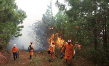 Alerta roja en región del centro de Colombia por incendios forestales