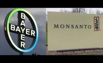 Bayer: el gigante de la química y la sombra de Monsanto
