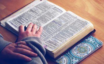 Aprueban en Florida ley para el estudio de la Biblia en los colegios públicos