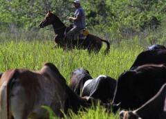 Cubanos esperan por la carne de Paraguay y los pollos de España