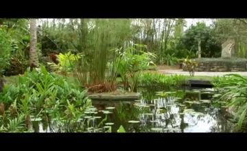Jardines botánicos de Cuba y Estados Unidos firman acuerdo