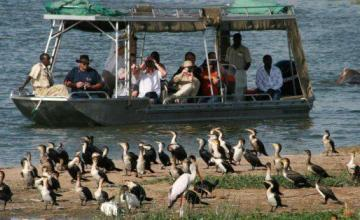 Estadounidense y su chofer son secuestrados en parque nacional de Uganda