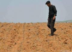 Norcorea revela que sufre su peor sequía en décadas