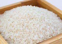 Corea del Sur anuncia que enviará 50.000 toneladas de arroz al Norte ante la escasez de alimentos
