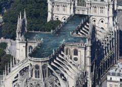 Francia recomienda a embarazadas y niños análisis de plomo en sangre tras el incendio de Notre Dame