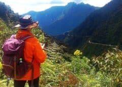 ¿Qué es el arenavirus, el misterioso brote que ha alarmado a Bolivia?