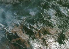 Incendios en el Amazonas repercuten en Ecuador, Perú y Bolivia