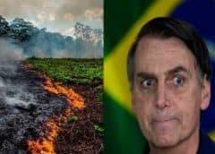 Bolsonaro estudia envío del Ejército para combatir incendios en Amazonia, crece presión mundial