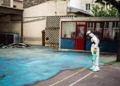Notre-Dame: Empezaron las obras en las escuelas parisinas contaminadas por plomo