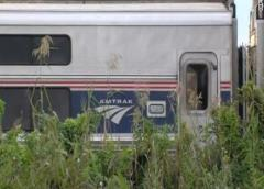 Palm Beach: Muertos tras accidente entre tren de Amtrak y un auto