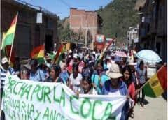 """""""Habrá guerra"""" si nos sacan tierra, advierten los yungas cocaleros en Bolivia"""