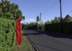 Epidemia de sarampión en Samoa: 62 muertos, calles desiertas