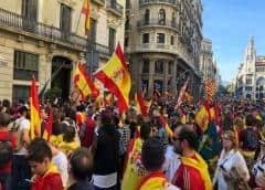 La sociedad civil se moviliza mañana en Madrid para protestar contra el pacto PSOE-ERC-Podemos
