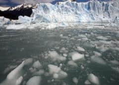 Denuncian que YouTube promueve el negacionismo climático con su algoritmo