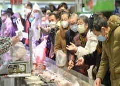 Carne de murciélago sigue siendo popular en zonas de Indonesia, pese a miedo al coronavirus
