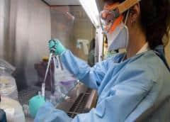 Test propios y tratamiento con plasma: la ciencia argentina libra su propia batalla contra el coronavirus