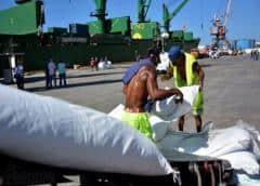 """El régimen cubano pone el arroz en """"cuarentena"""""""