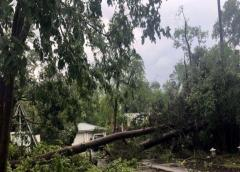 Tormentas y tornados azotan el sur de Estados Unidos
