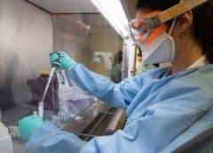 Descubren mutación del coronavirus que aumenta posibilidades de infección