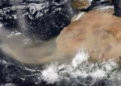Enorme Nube De Polvo Del Sahara Afectará A Cuba Y Al Sur De Florida Esta Semana