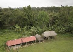 Panamá: Detienen a tres por presunta secta que retenía niños