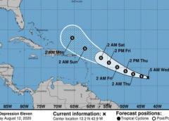 Depresión tropical se convertiría en la tormenta Josephine en las Antillas menores