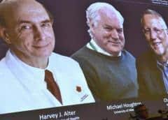 Británico Michael Houghton y estadounidenses Harvey Alter y Charles Rice ganan el Premio Nobel de Medicina