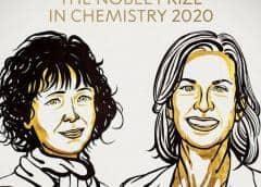 Dos mujeres ganan Premio Nobel de Química 2020