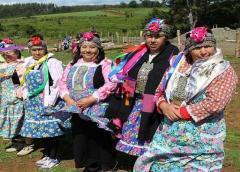 Senado chileno rechaza proyecto de escaños indígenas para redactar nueva Constitución