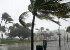 Tormenta Eta castiga al sur de la Florida con torrenciales lluvias y severas inundaciones
