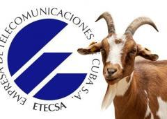 Insólito: Ministerio de Comunicaciones cita a periodista independiente cubano para un interrogatorio en oficina de ETECSA