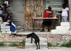 Cuba : No hay absolutamente nada que comer