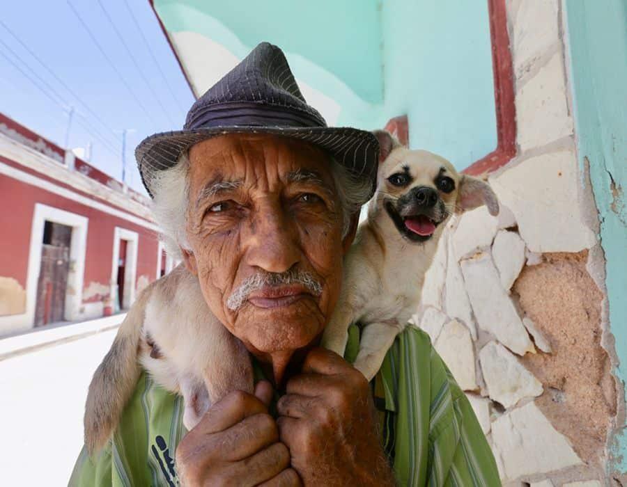 Bienestar Animal Cuba y una ley justa que no llega