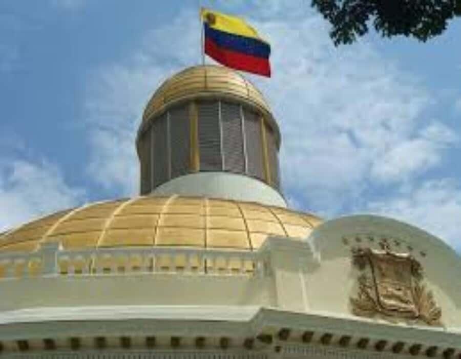 AN de Guaidó acusó a relatora de la ONU de ser aliada