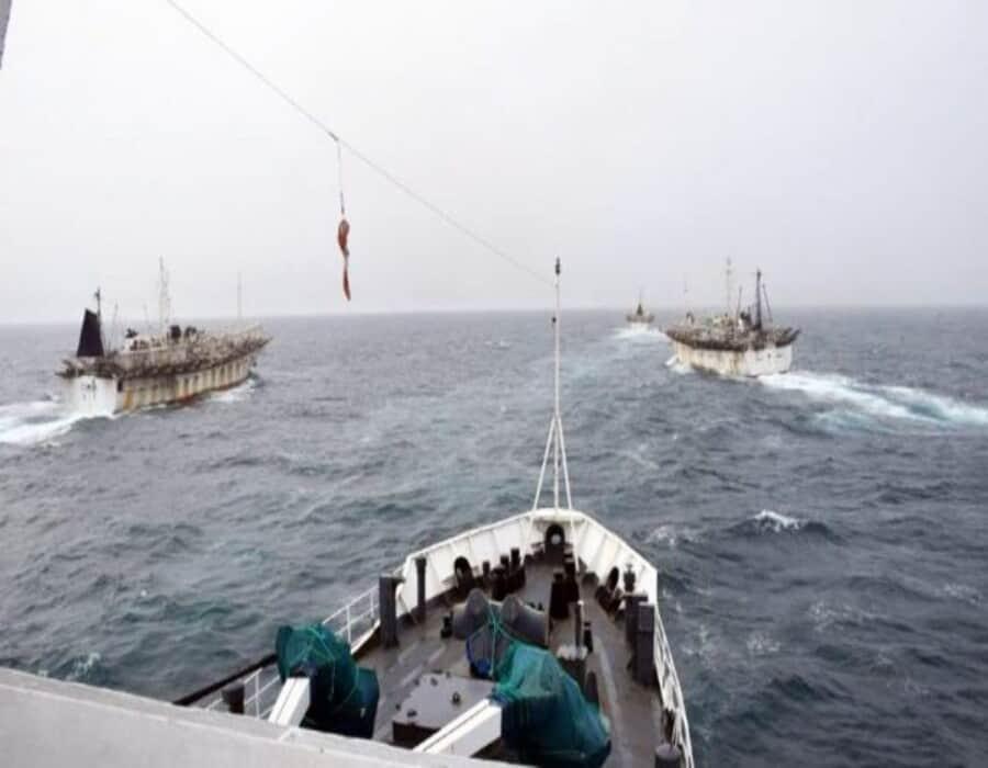El descontrol pesquero, el gran dolor de cabeza del Agujero Azul argentino