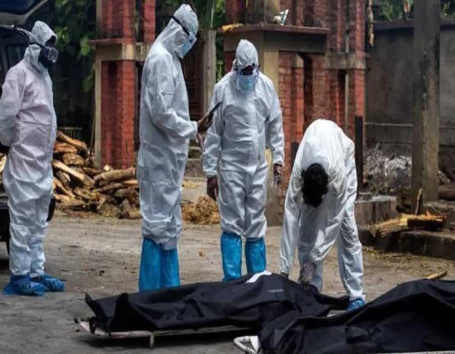 Latinoamérica en alerta: se expande el letal 'hongo negro', ligado al COVID-19