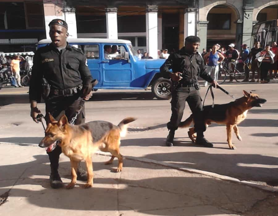 Reportan despliegue militar en Camagüey: Casi en cada esquina hay policías y Boinas Negras