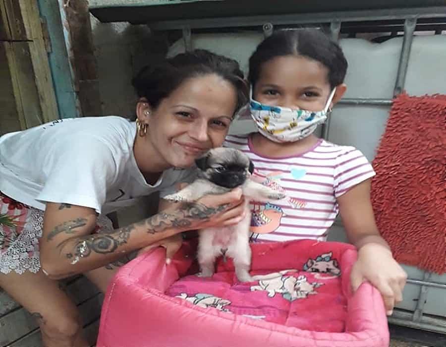 """Madre adoptiva de 104 perros y gatos en Cuba: """"Necesito ayuda para alimentarlos, ellos no tienen la culpa de lo que está pasando en el país"""""""
